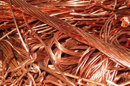 COPPER MILLBERRY